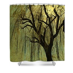 The Willow Tree Shower Curtain by Susanne Van Hulst