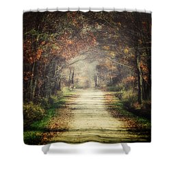 The Winding Road Shower Curtain by Lisa Russo