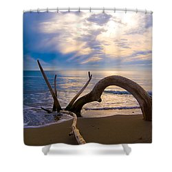 The Wooden Arch Shower Curtain by Marco Busoni