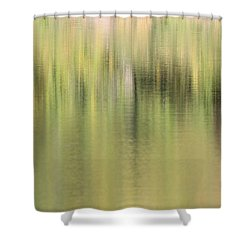 Shower Curtain featuring the photograph The Woods by Penny Meyers
