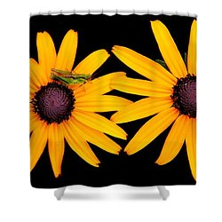 Shower Curtain featuring the photograph The Yellow Rudbeckia by Davandra Cribbie