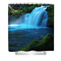 Thee Elusive Beast Shower Curtain