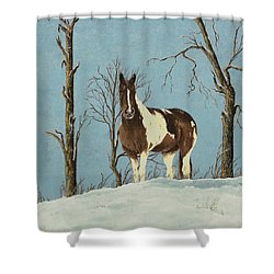 There Is A Season Shower Curtain by Mary Ann King