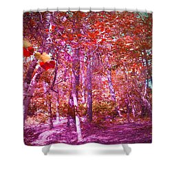 Shower Curtain featuring the photograph Thicket In Color by George Pedro
