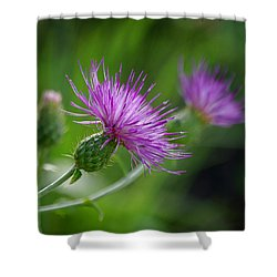 Shower Curtain featuring the photograph Thistle Dance by Vicki Pelham