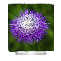 Thistle II Shower Curtain by Tamyra Ayles