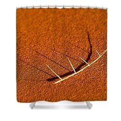 Thorn Shadows Shower Curtain