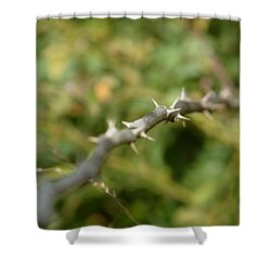Thorny Shower Curtain by Lisa Phillips