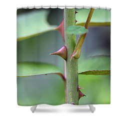 Thorny Stem Shower Curtain
