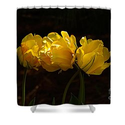 Three Cheers For April Shower Curtain by Byron Varvarigos