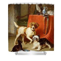 Three Dogs Shower Curtain by Conradyn Cunaeus