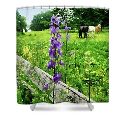 Three Horses In Distance Shower Curtain by Susan Savad