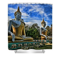 Three Of A Kind Shower Curtain by Adrian Evans