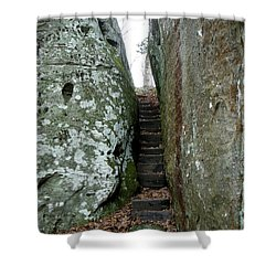Shower Curtain featuring the photograph Through The Crack by Paul Mashburn