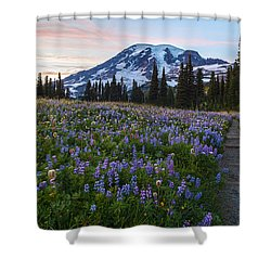Through The Flowers Shower Curtain by Mike Reid