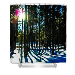 Shower Curtain featuring the photograph Through The Trees by Shannon Harrington