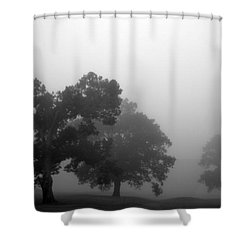 Through Time Shower Curtain by Amanda Barcon