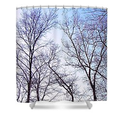 Shower Curtain featuring the photograph Through To Heaven by Pamela Hyde Wilson