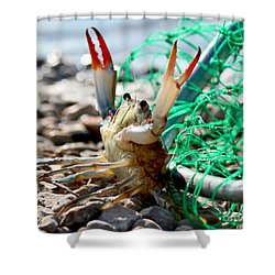 Crab Throw Me Something Mister Shower Curtain
