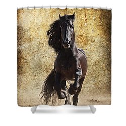Thundering Stallion D6574 Shower Curtain by Wes and Dotty Weber