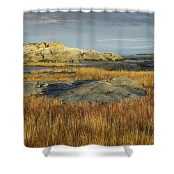 Tidal Marsh Riviere Trois Pistoles Shower Curtain by Tim Fitzharris