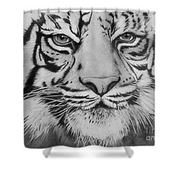 Tiger's Eyes Shower Curtain