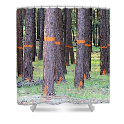 Timber Marking Shower Curtain