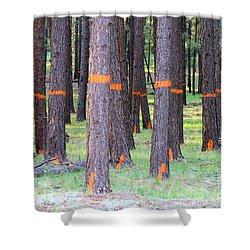 Timber Marking Shower Curtain