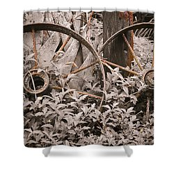 Time Forgotten Shower Curtain by Carolyn Marshall