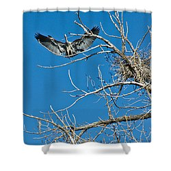Time To Nest Shower Curtain
