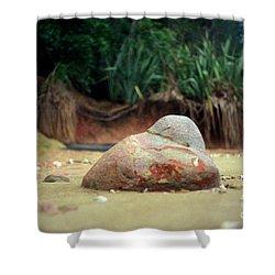 Shower Curtain featuring the photograph Tinopai Beach Rock by Mark Dodd