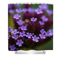 tiny blossoms II Shower Curtain by Andreas Levi