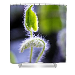 Tiny New Leaves Shower Curtain by Judi Bagwell