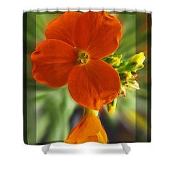 Shower Curtain featuring the photograph Tiny Orange Flower by Debbie Portwood