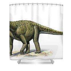 Titanosaurus Indicus, A Prehistoric Era Shower Curtain by Sergey Krasovskiy