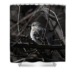 To Kill A Mockingbird Shower Curtain by Lois Bryan