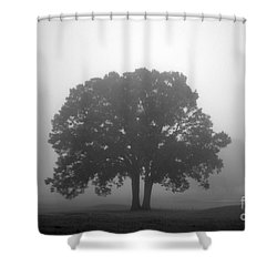 Together Always Shower Curtain by Amanda Barcon
