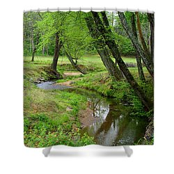 Shower Curtain featuring the photograph Toms Creek In Early Spring by Kathryn Meyer