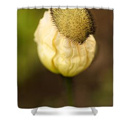 Top Hat Shower Curtain by Brooke Roby