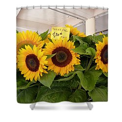Shower Curtain featuring the photograph Tournesol by Carla Parris