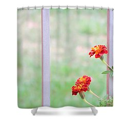 Tranquil Shower Curtain by Sonali Gangane
