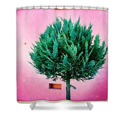 Tree And Colorful Pink Wall Shower Curtain by Matthias Hauser