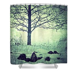 Tree And Fence In The Fog And Snow Shower Curtain by Jill Battaglia