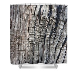 Shower Curtain featuring the photograph Tree Bark No. 1 Stress Lines by Lynn Palmer