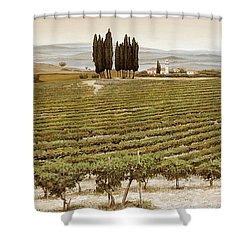 Tree Circle - Tuscany  Shower Curtain by Trevor Neal
