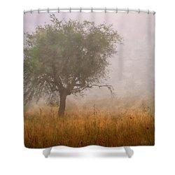 Tree In Fog Shower Curtain by Debra and Dave Vanderlaan
