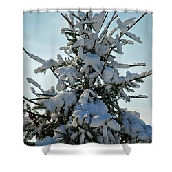 Shower Curtain featuring the photograph Tree Top by Mark Dodd