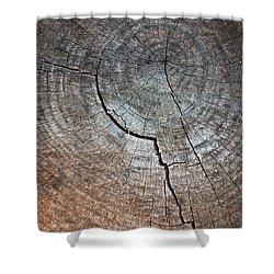 Tree Trunk Shower Curtain by Carlos Caetano