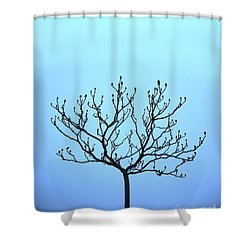 Tree With The Blues Shower Curtain