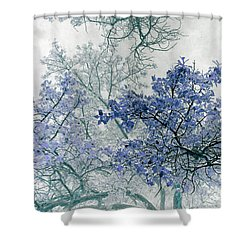 Trees Above Shower Curtain